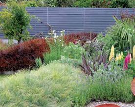 parterre de fleurs sans entretien perfect les plantes with parterre de fleurs sans entretien. Black Bedroom Furniture Sets. Home Design Ideas